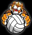 Tiger-Volleyball-cute-small