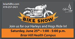 Harleys and Hogs