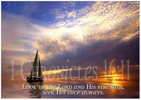 Seek the Lord Earnestly: a devotion by Ann Elaine Broughton