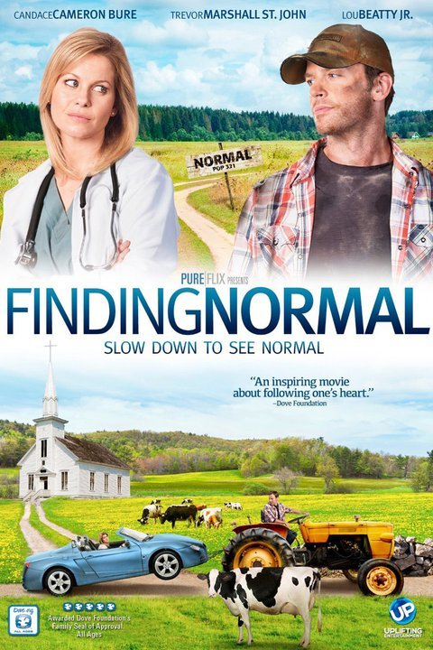 Finding Normal (2013) TV Movie Directed by Brian Herzlinger Shown: poster art
