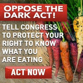 TAKE ACTION: CONGRESS TO VOTE ON YOUR RIGHT TO KNOW
