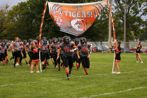 Here Come the Tigers!
