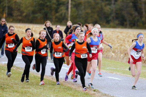 Cross Country--BVC League Tournament on October 17