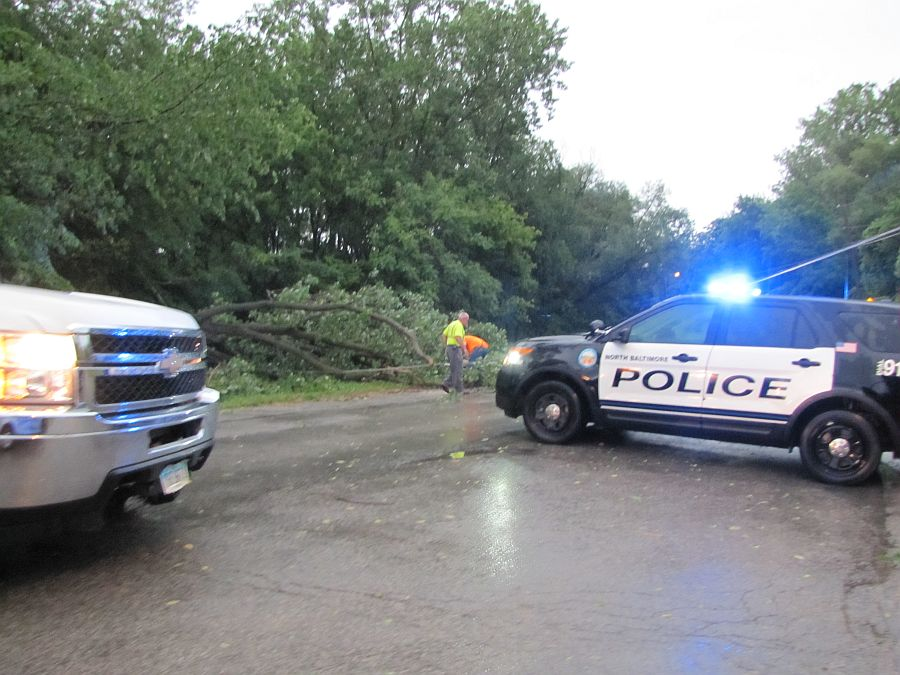Quick Storms Blows Down Limbs