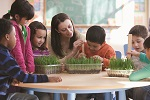 Tips to Get Involved at Your Child's School