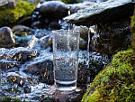 """Chowline: """"Raw"""" Water Trend Can Make You Sick"""