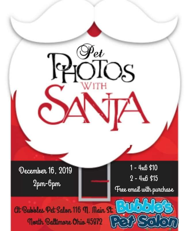 Pet Christmas Photo Shoot Coming to Downtown NB