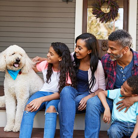 4 Things to Consider Before Adopting a Pet