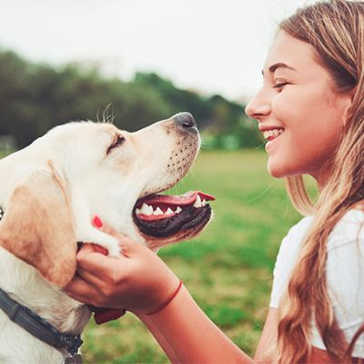 4 Tips for Welcoming a New Dog into Your Home
