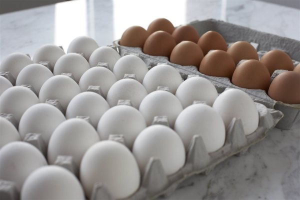 Egg farmers' donation fights food insecurity