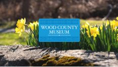 Spring Happenings at the Museum