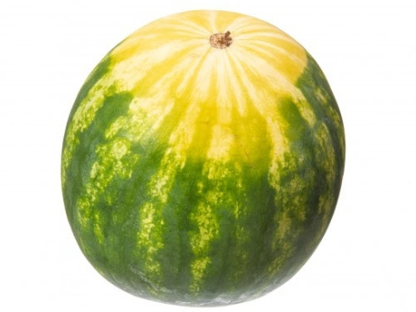 Chowline: Is this Melon Ripe?